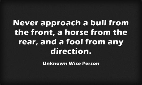 Never approach a bull from the front, horse from the rear, and a fool from any direction.