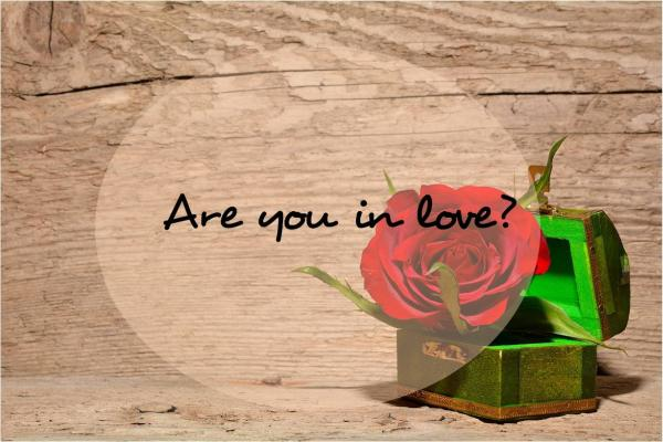 Question: Are you in love?