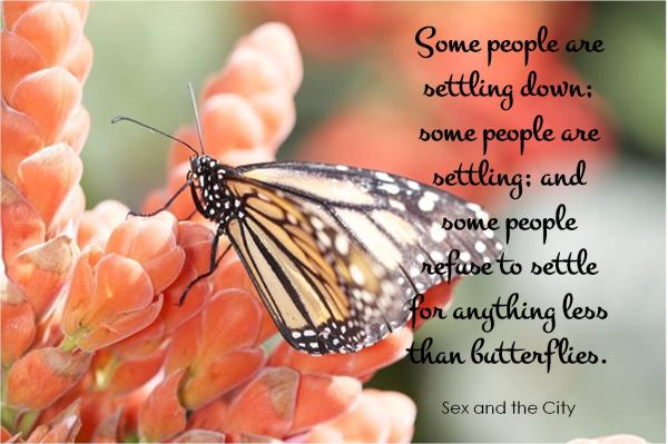 Some people are settling down; some people are settling; and some people refuse to settle for anything less than butterflies.