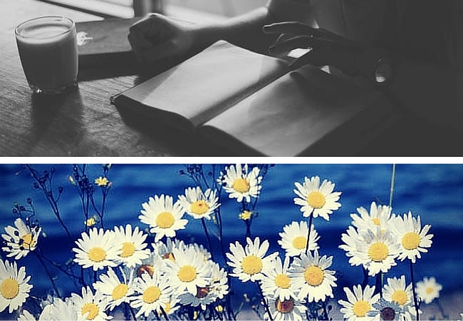 a picture of a woman reading and a picture of happy daisies