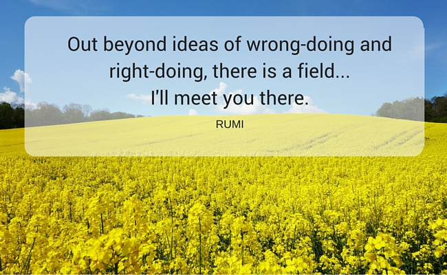 a picture of a field of flowers and big sky; Out beyond ideas of wrong-doing and right-doing, there is a field... I'll meet you there. ~ RUMI