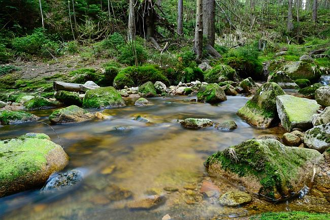 image of a babbling brook