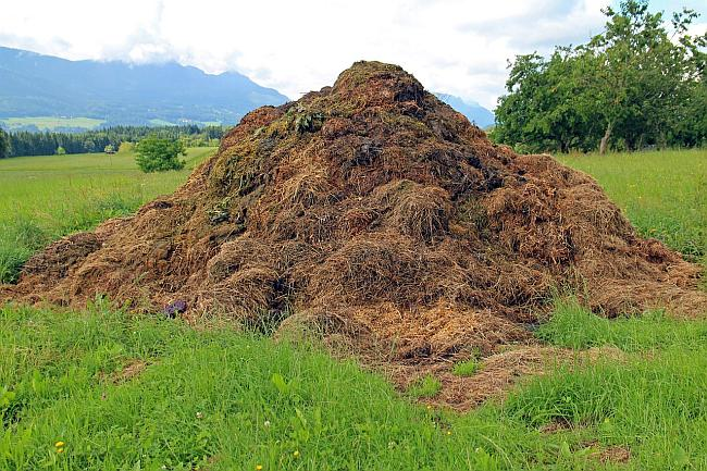 giant pile of dung